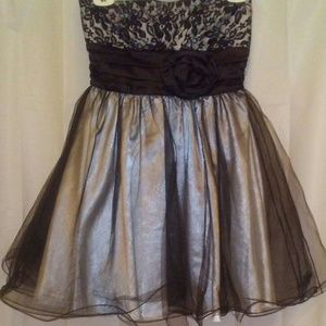 Strapless Lace and tule dress